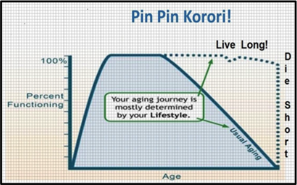 Graph of Pin Pin Korori! Age against Percent Functioning