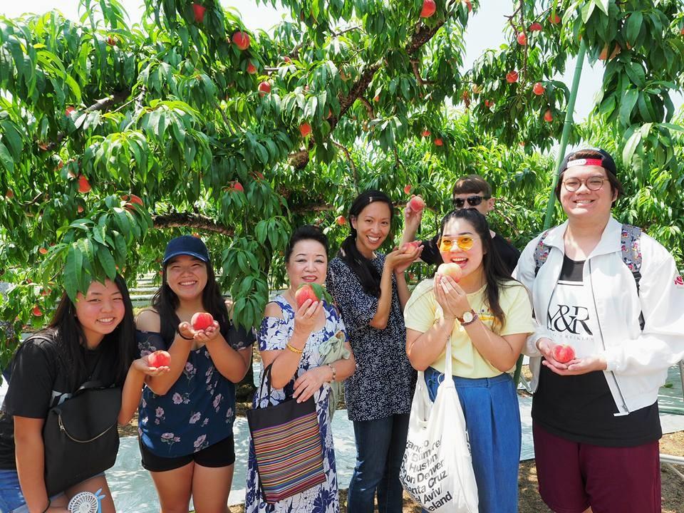 RMD Hawaii member Nikka Kahalekulu-Nakama especially enjoyed visiting Azuma Farm and picking and eating a fresh peach right off the tree. (Photo by Yumi Sakuma Watanabe)