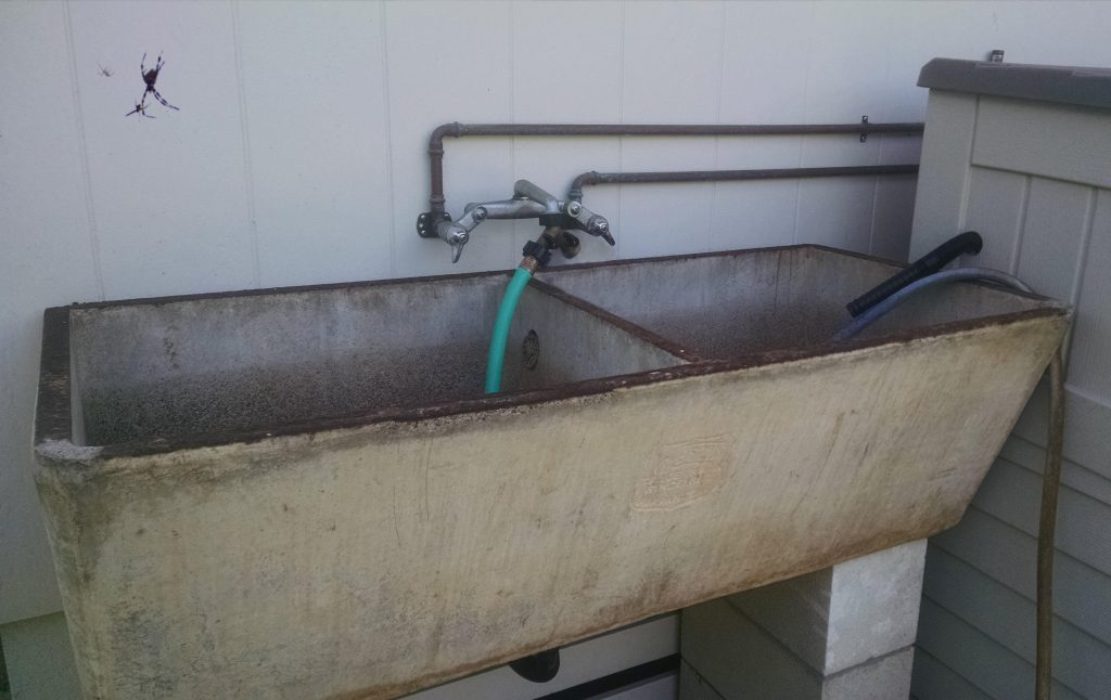 The concrete sink from the old furo house still works!