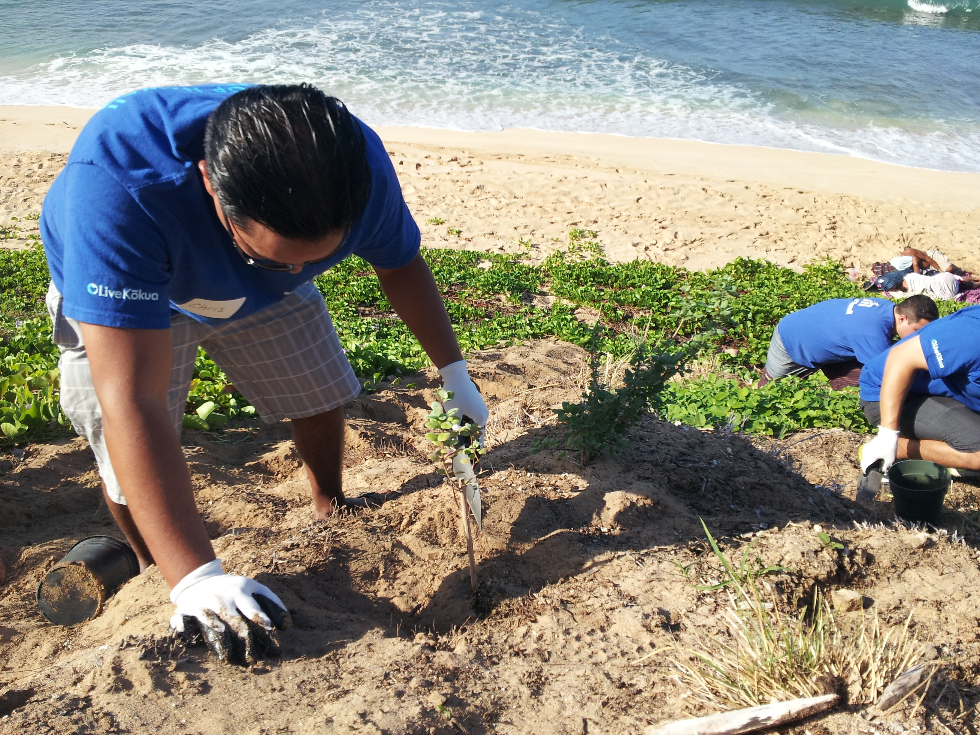 "Students at work on a native Hawaiian planting project at Piliokahe Beach (commonly referred to as ""Tracks"") in Nänäkuli. The Mälama Learning Center ""adopted"" the city-owned beach park with the goal of restoring a section of it with native plants to control erosion, beautify the area and engage the community."