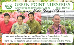 Ad for Green Point Nursery