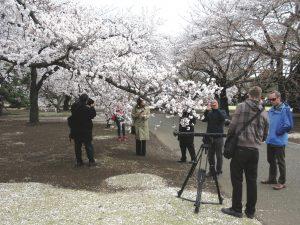 The crew made a brief stop at the Shinjuku Gyoen National Garden in Tökyö to shoot the sakura blossoms in full bloom.