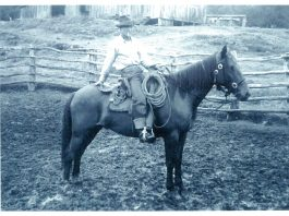 "Kükai'au Ranch cowboy Toshi Imoto on his horse. ""Toshi Imoto was one of the best all-around cowboys of that time,"" said former Parker Ranch veterinarian Dr. Billy Bergin. (Photo courtesy Paniolo Preservation Society/Thomas Lindsey Collection)"
