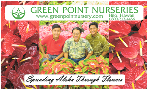 Ad for Green Point Nurseries 'Spreading the Aloha Through Flowers'