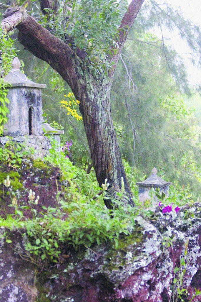 Shrines at Odaisan. (Photo courtesy of Läwa'i International Center)