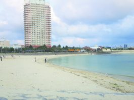 An almost-deserted Mihama Beach, in late March. (Photos courtesy of Byrnes Yamashita)