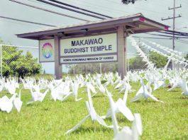 Makawao Hongwanji members make cranes to decorate the temple during obon season. (Photo courtesy of the Maui News)