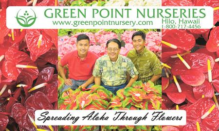 Green Point Nurseries Ad